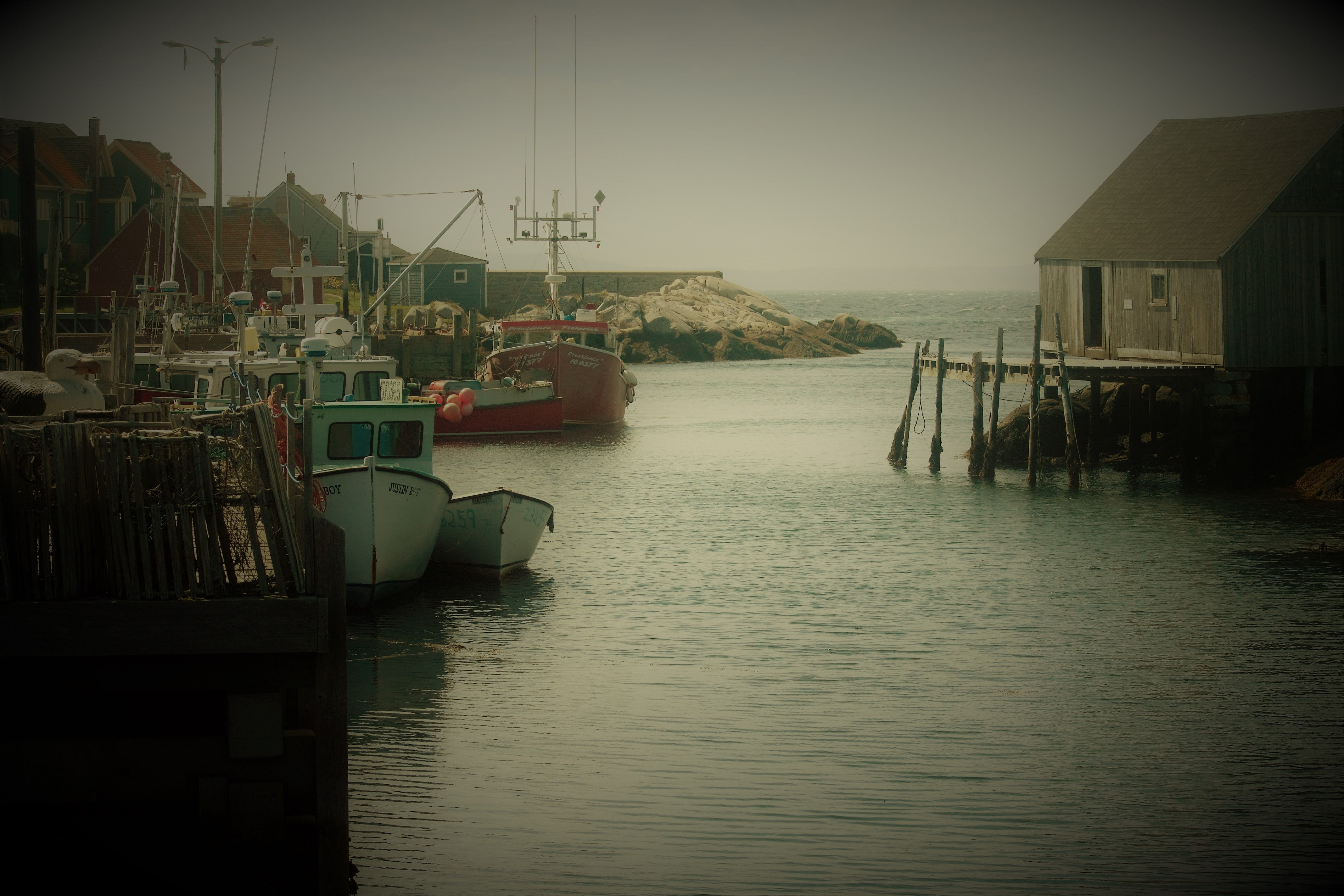 Free stock photo of canada, fishingvillage, novascotia, peggyscove
