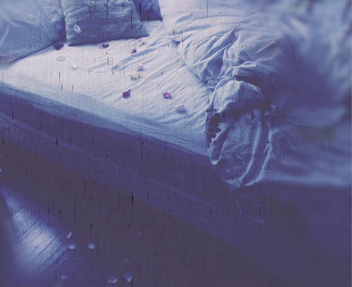 Free stock photo of bedding, flower petals, romance