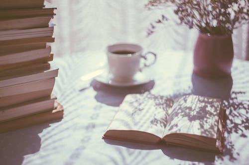 Gratis stockfoto met boeken, drinken, eigen tijd, fabriek
