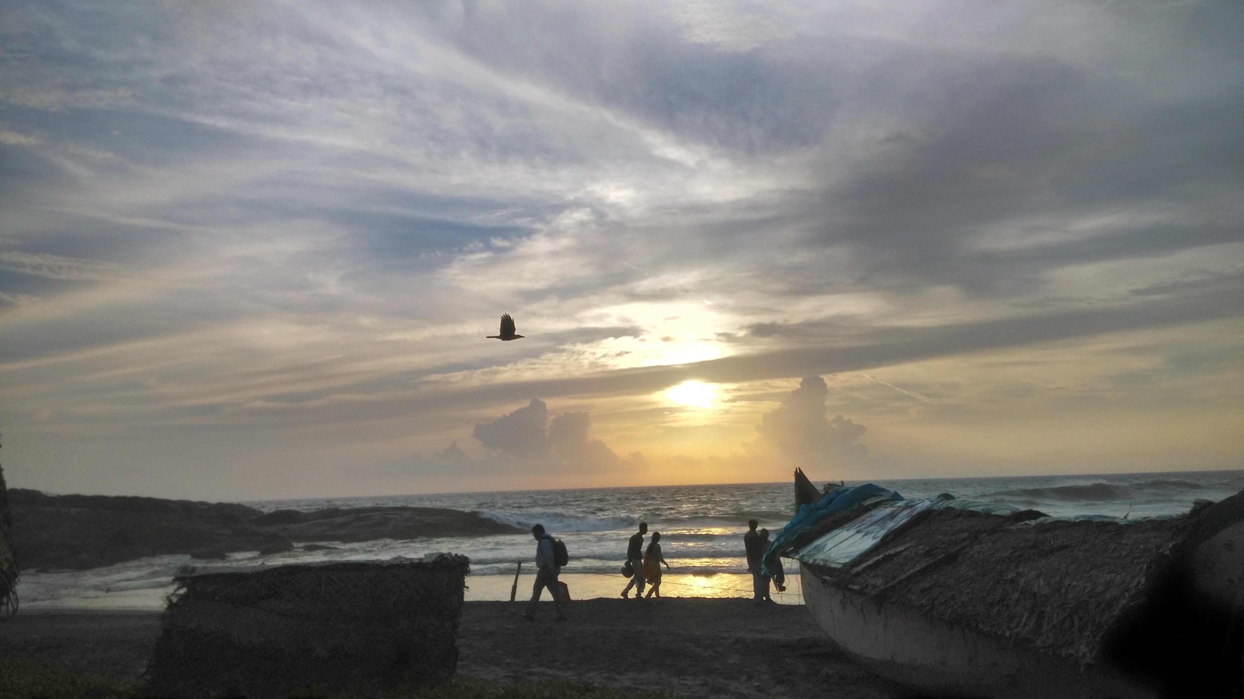Free stock photo of beach, boat, boats, camera