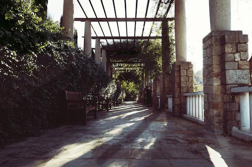 公園, 公園長椅, 巷弄, 常春藤 的 免费素材照片