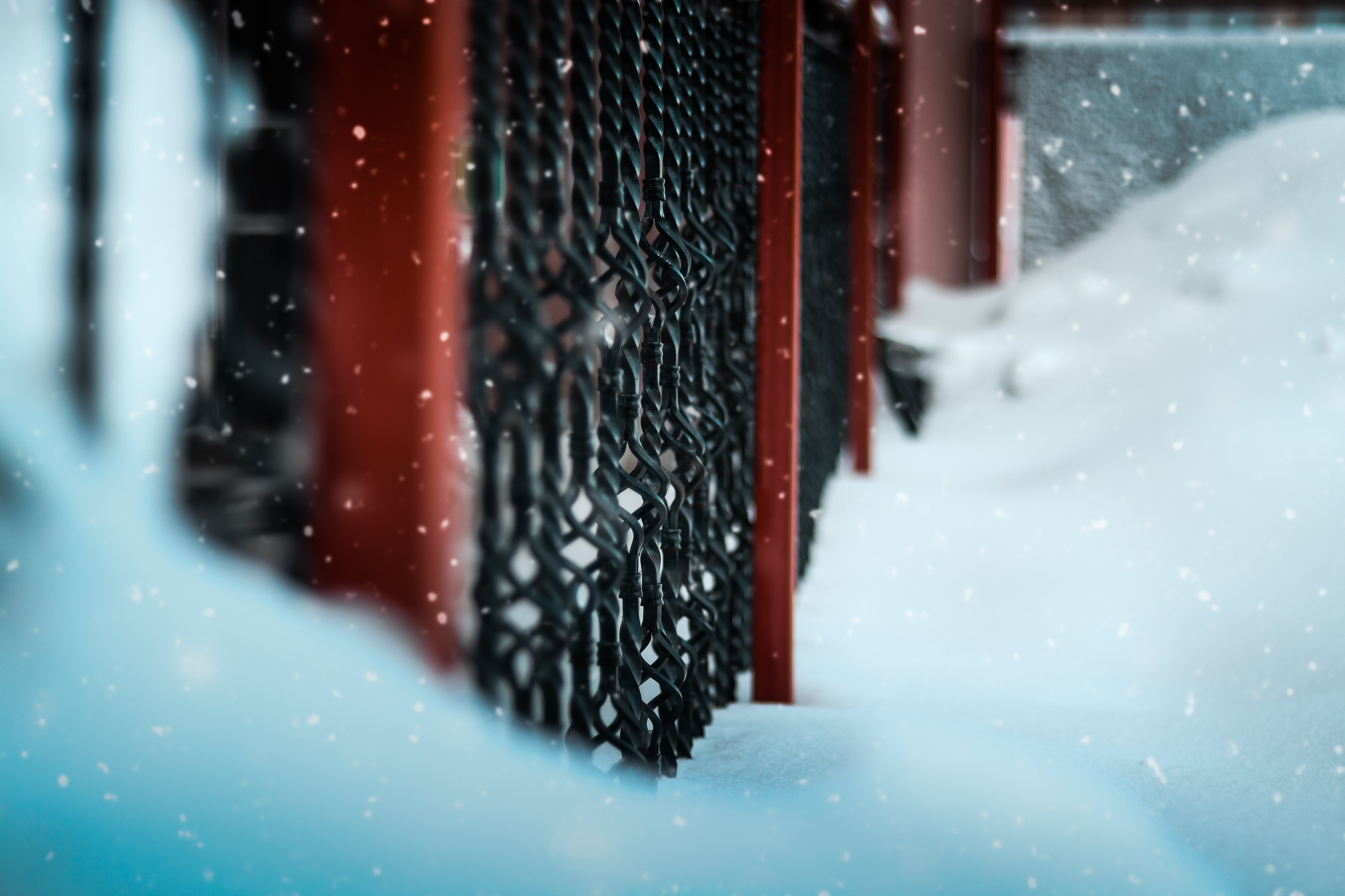 Selective Focus Photography Of Black Metal Gate Surrounded With Snow