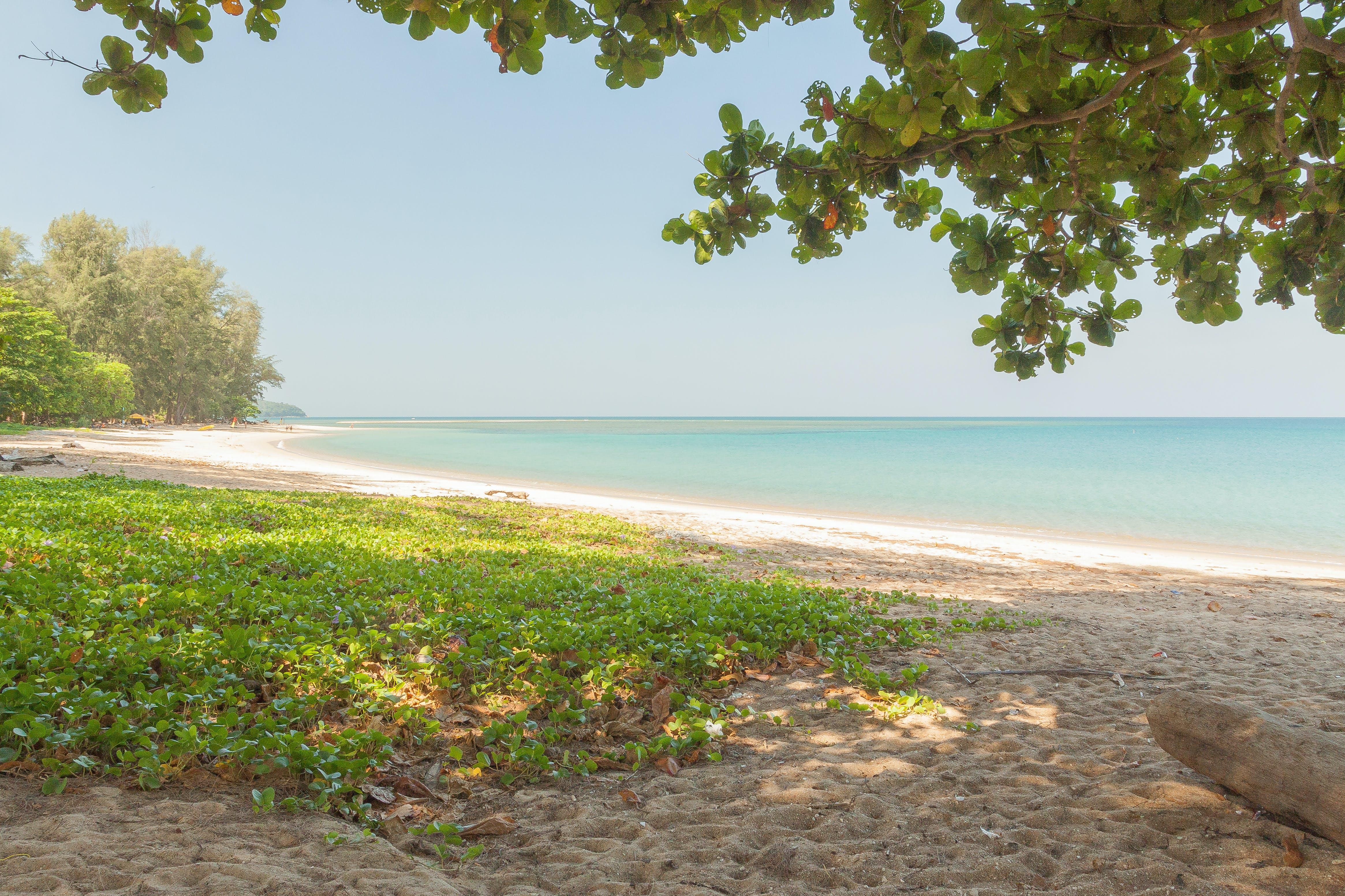 Free stock photo of beach, alone, thailand, surinam