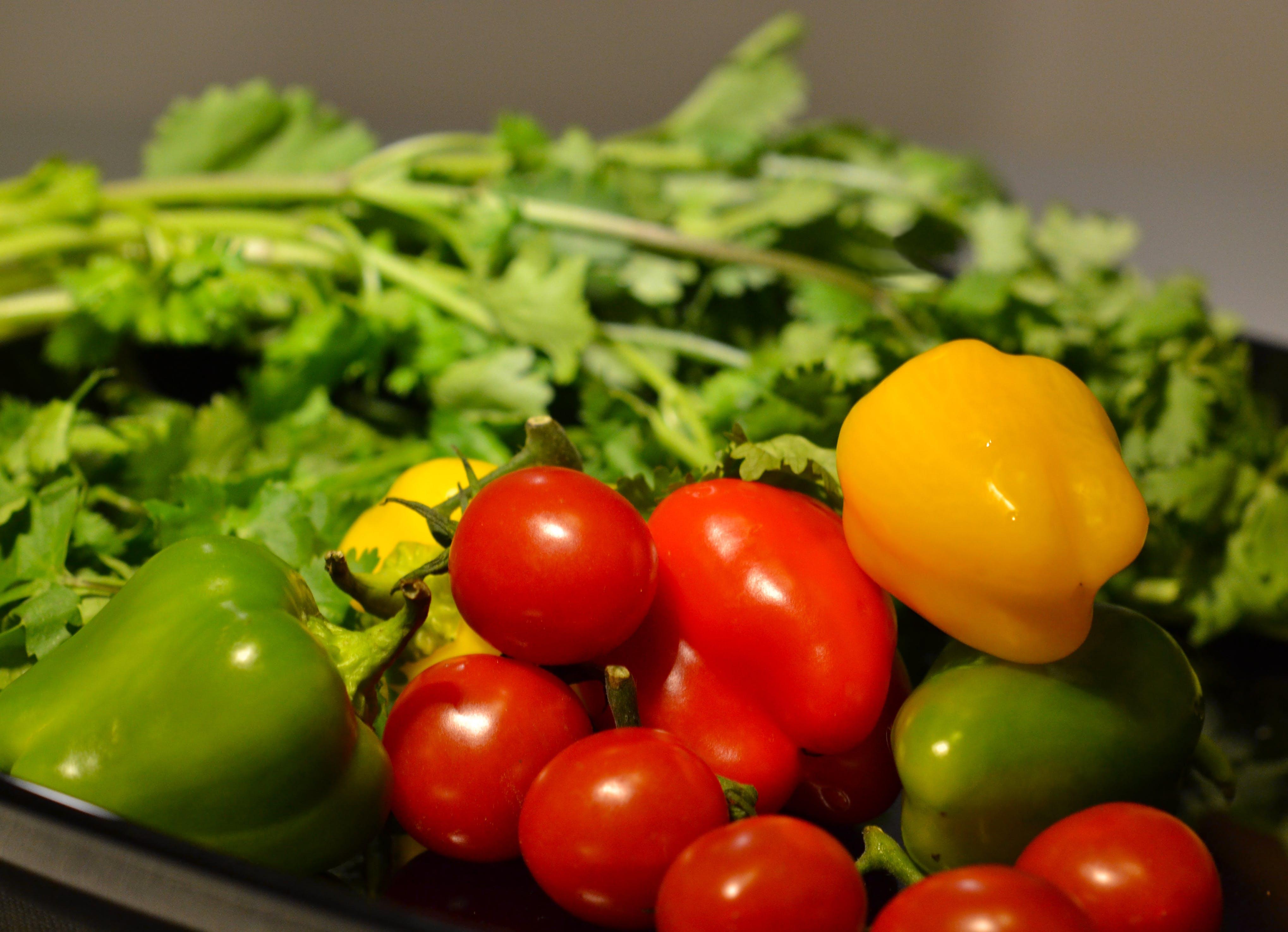 건강식품, 건강한, 건강한 생활, 건강한 식단의 무료 스톡 사진