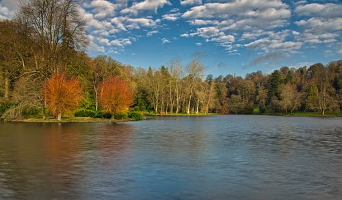 ağaçlar, bulutlar, Mavi gökyüzü, su kütlesi içeren Ücretsiz stok fotoğraf