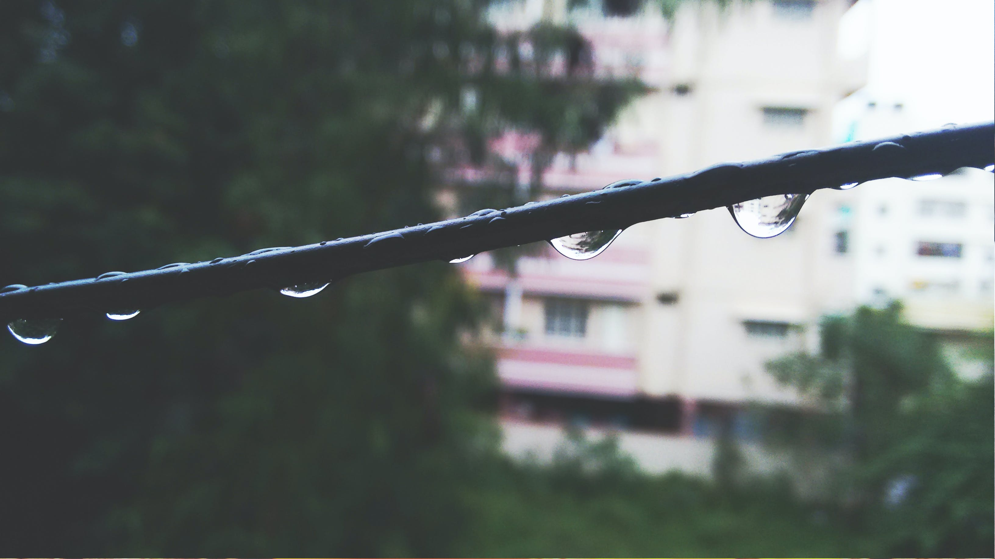 Selective Focus Photo of Water on Black Metal Rod