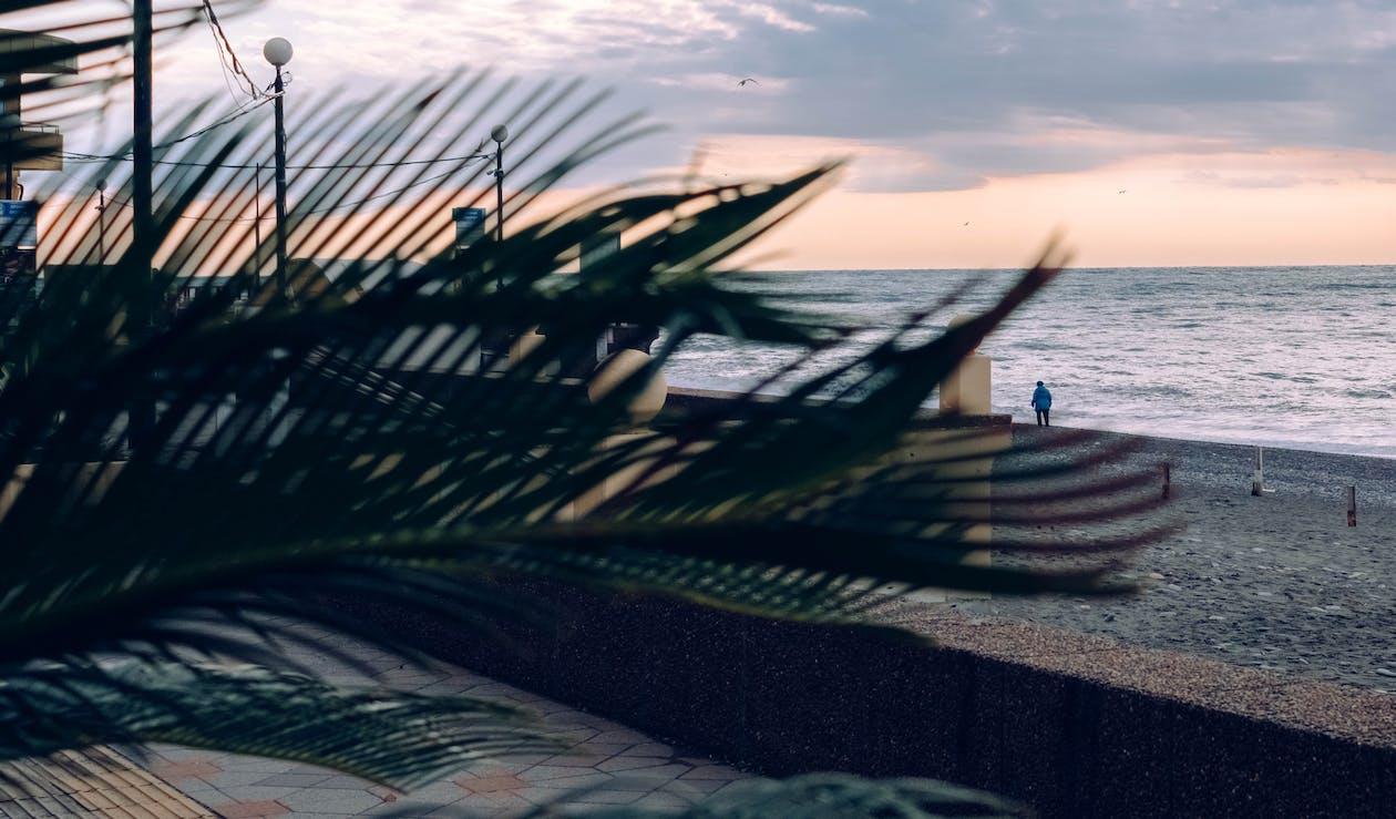 biển, biển Đen, fuji