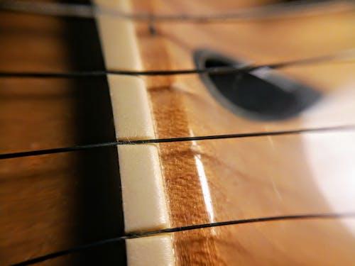 Foto stok gratis alat musik, gitar, gitar listrik, kacang