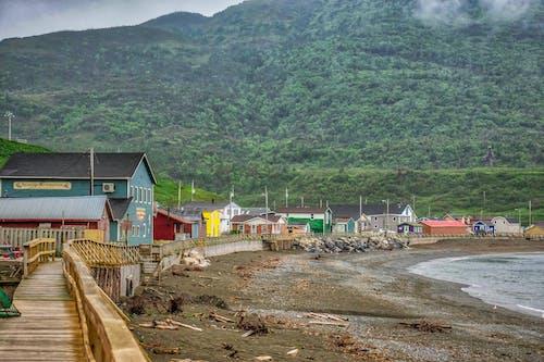Základová fotografie zdarma na téma oceán, pstruhové říční desky warlk