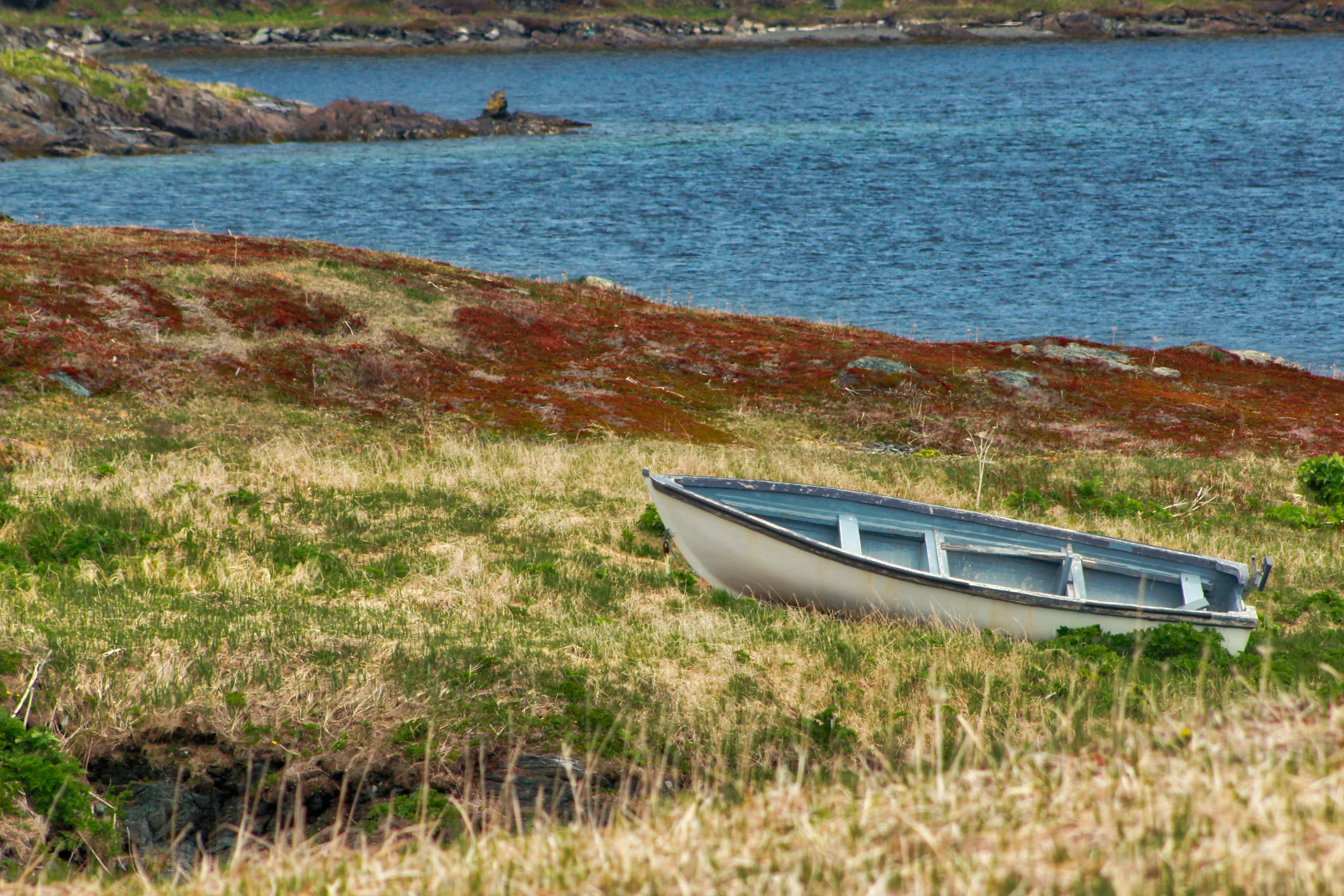 Free stock photo of abandoned, abandoned boat, boat