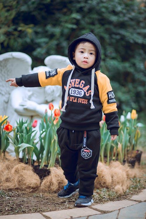 Photos gratuites de adorable, enfant, garçon, individu