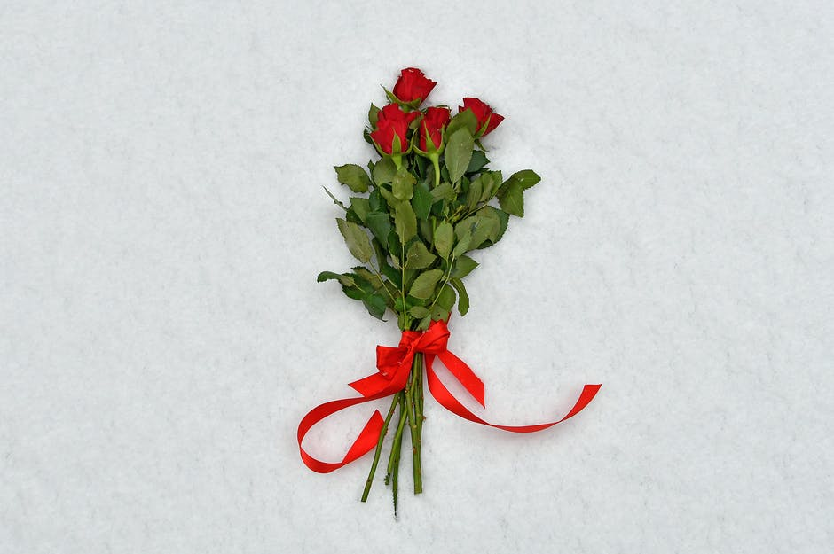 Four red roses on white textiles