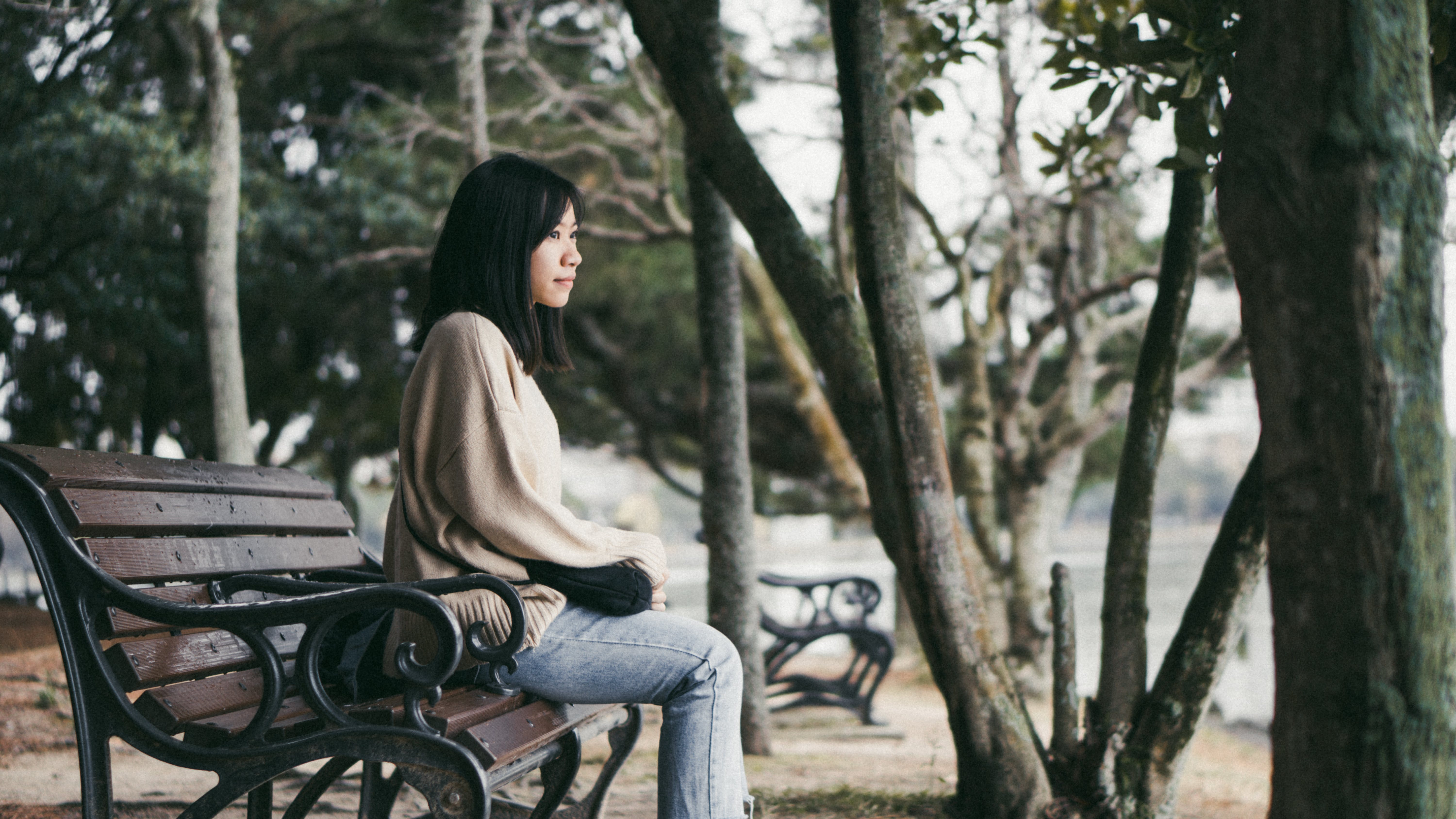 Photo of Woman Sitting on Bench Near Trees
