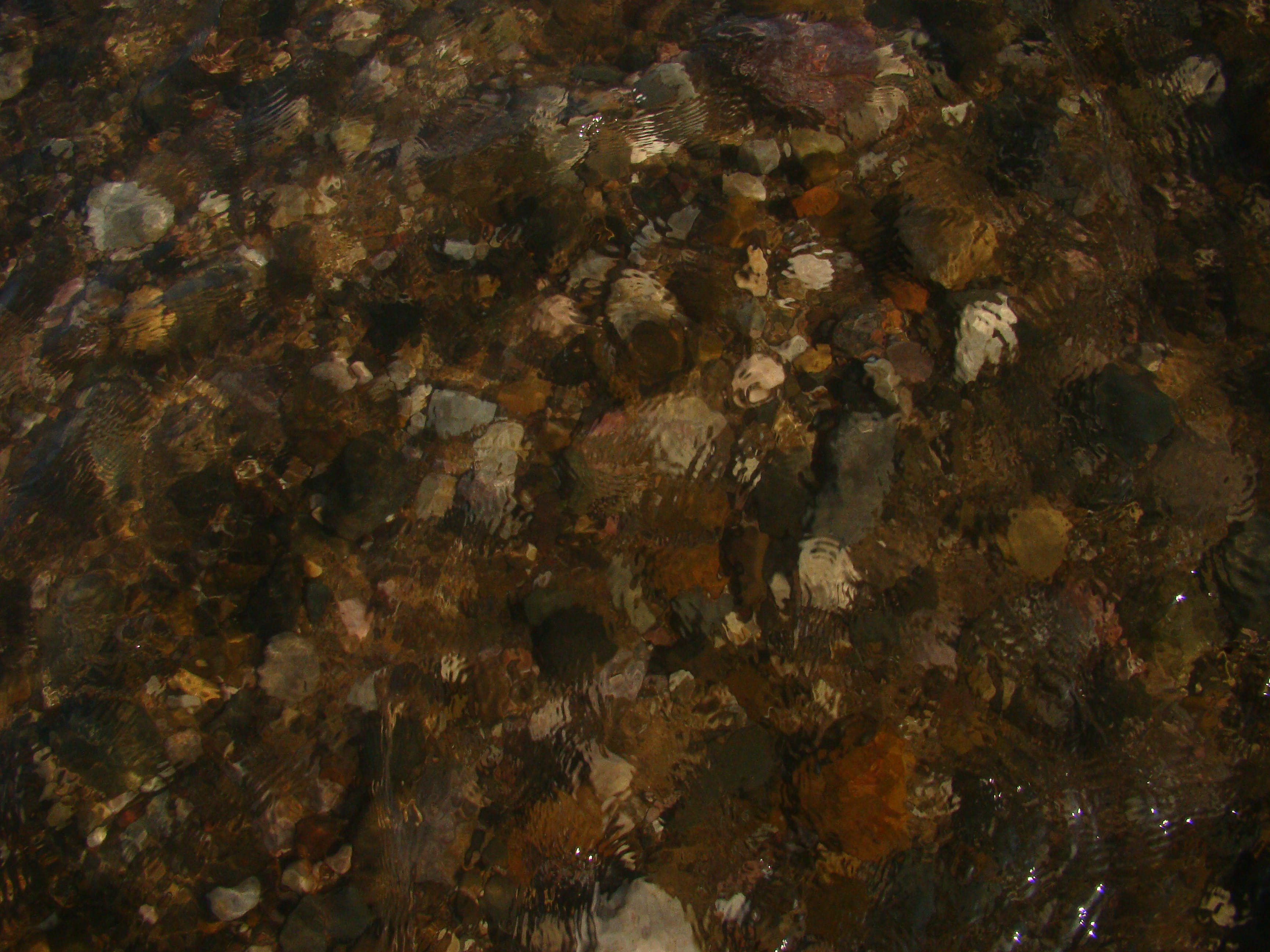 Free stock photo of texture, under water