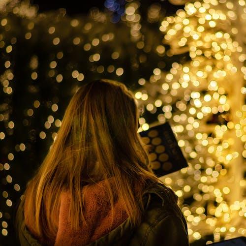 Free stock photo of lights, seasonal