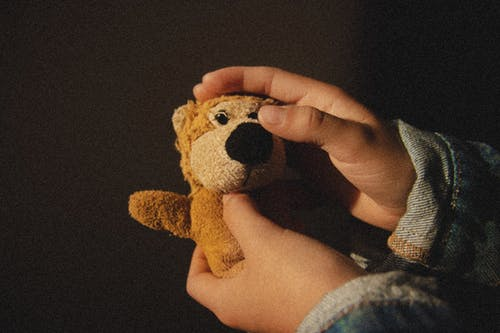 Person Holding Brown Plush Toy