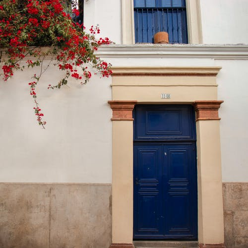 Free stock photo of blue, door, flowers, red