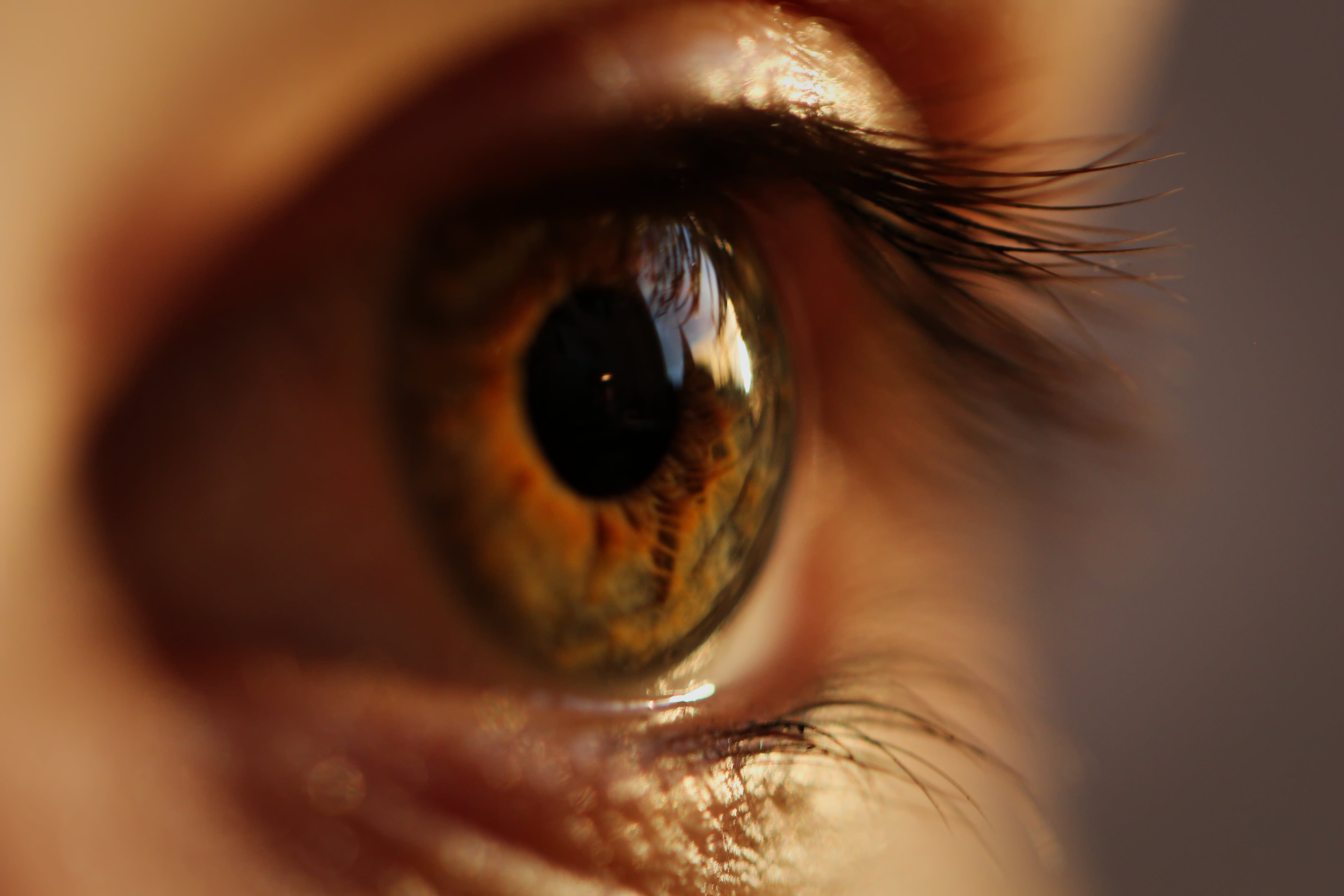 Close-up Photography Of Person's Eye