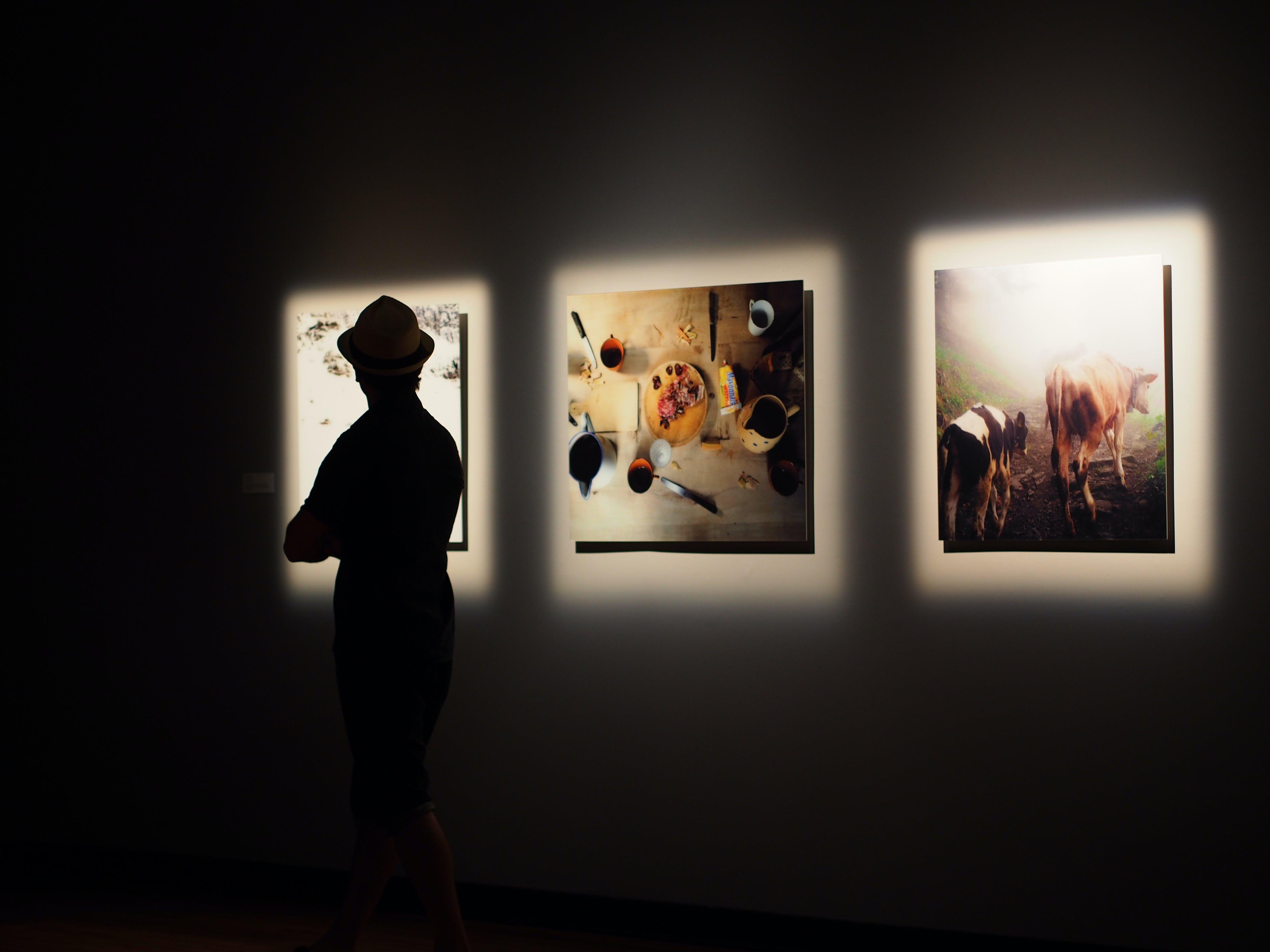 Free stock photo of art, art gallery, photos