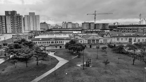 Kostnadsfri bild av bras, brasiliansk, Brasilien, park