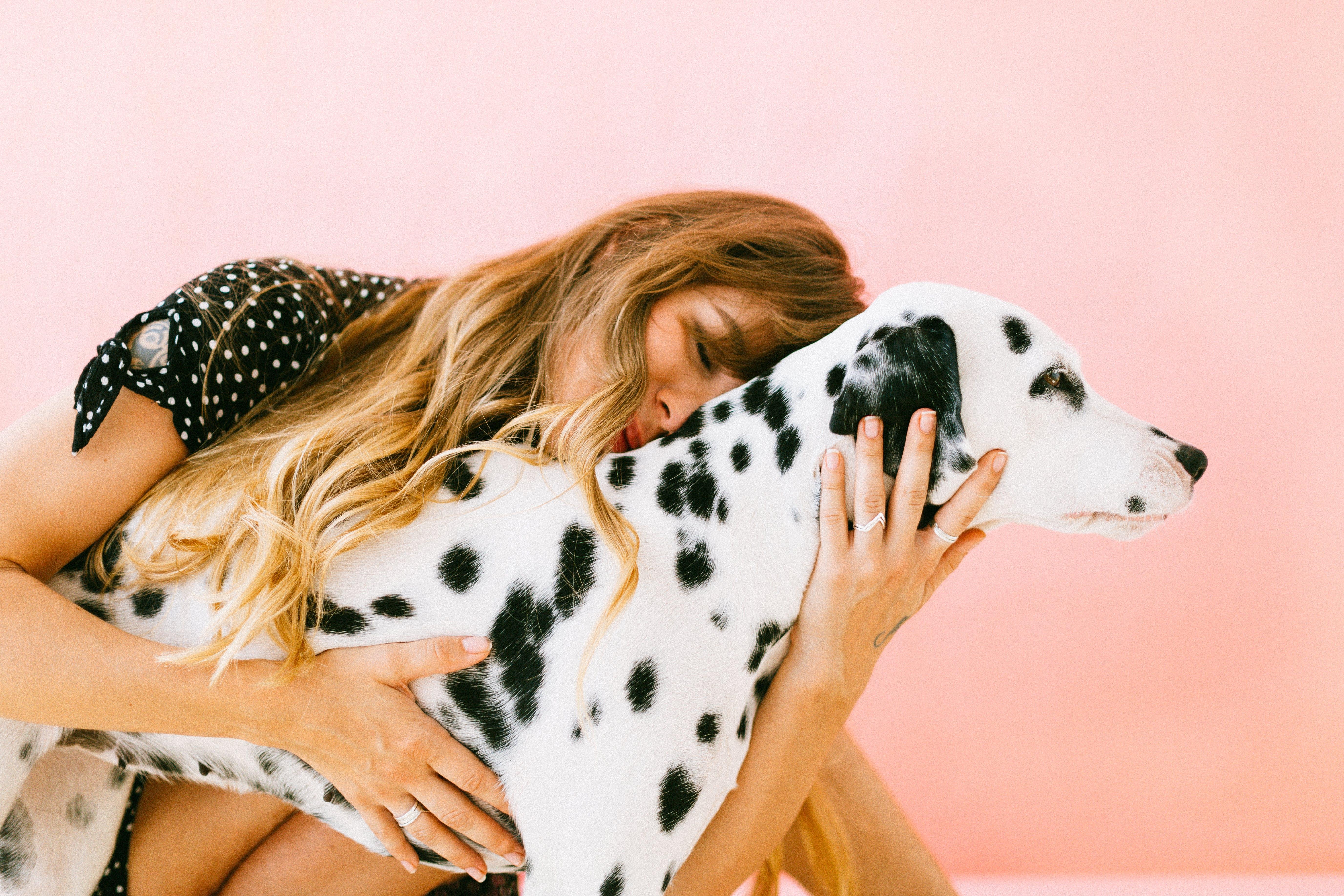 Mulher, abraçando, adulto, dalmatian