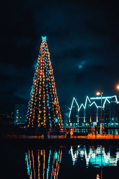 クリスマスの灯り, クリスマスツリー, 夜