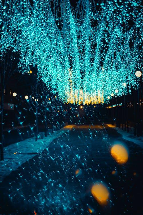 Foto profissional grátis de brilhante, cheio de cor, cor, cordão de lâmpadas
