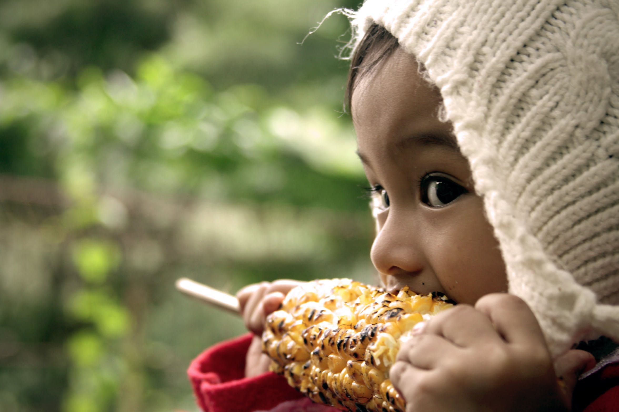 Free stock photo of asia, children, corn, cute
