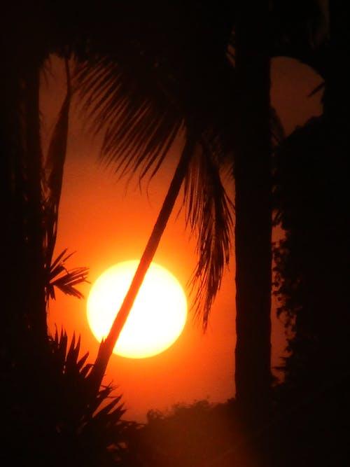 Foto d'estoc gratuïta de sol de vespre