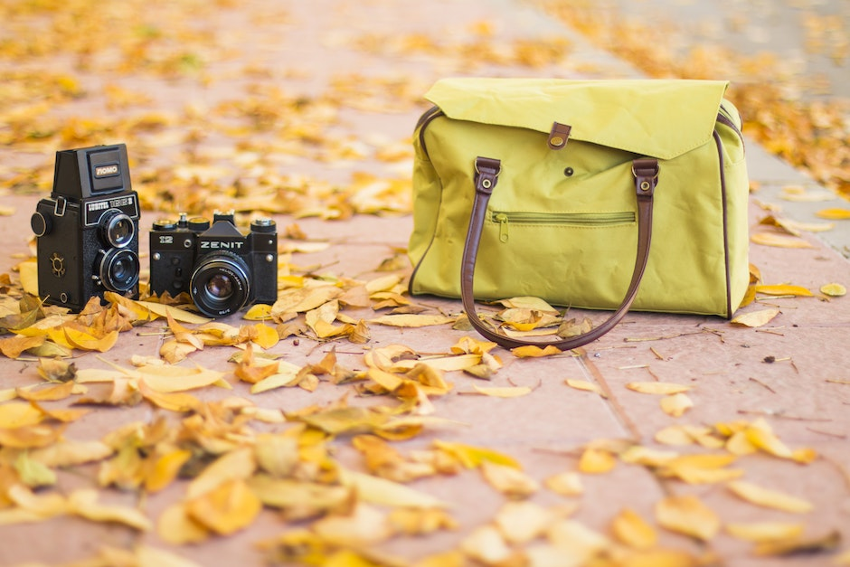 autumn, bag, camera