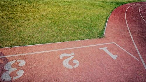 Foto profissional grátis de área, campo de esportes, campo de grama, chão