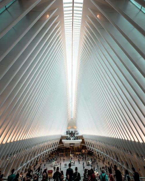 건축, 실내, 천장, 컨템포러리의 무료 스톡 사진