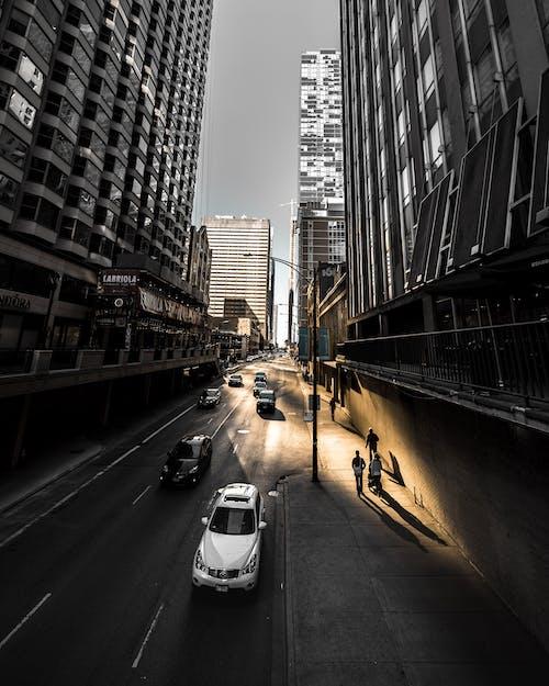 Foto profissional grátis de arquitetura, arranha-céu, automóveis, carros