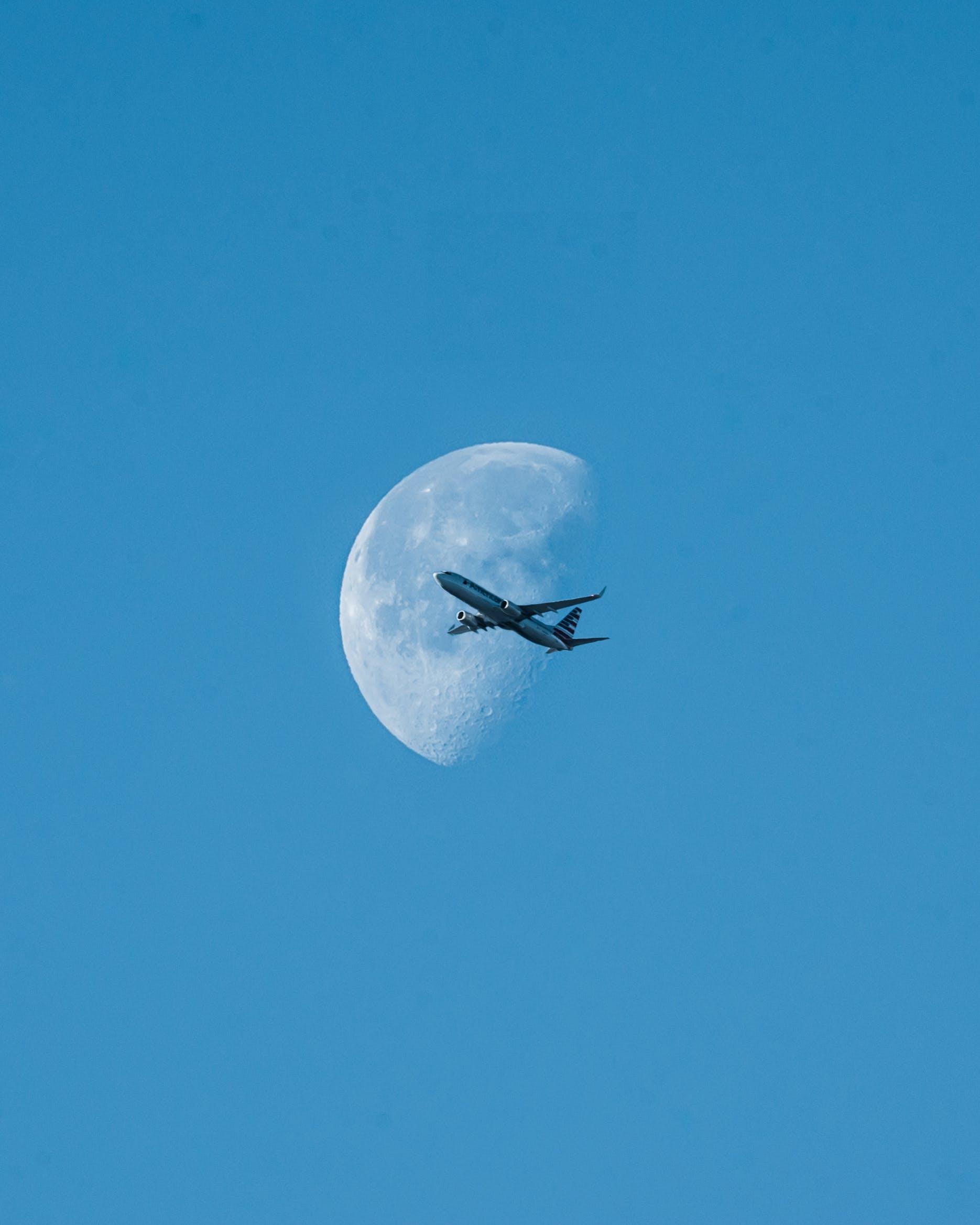 dagslys, fly, flyging