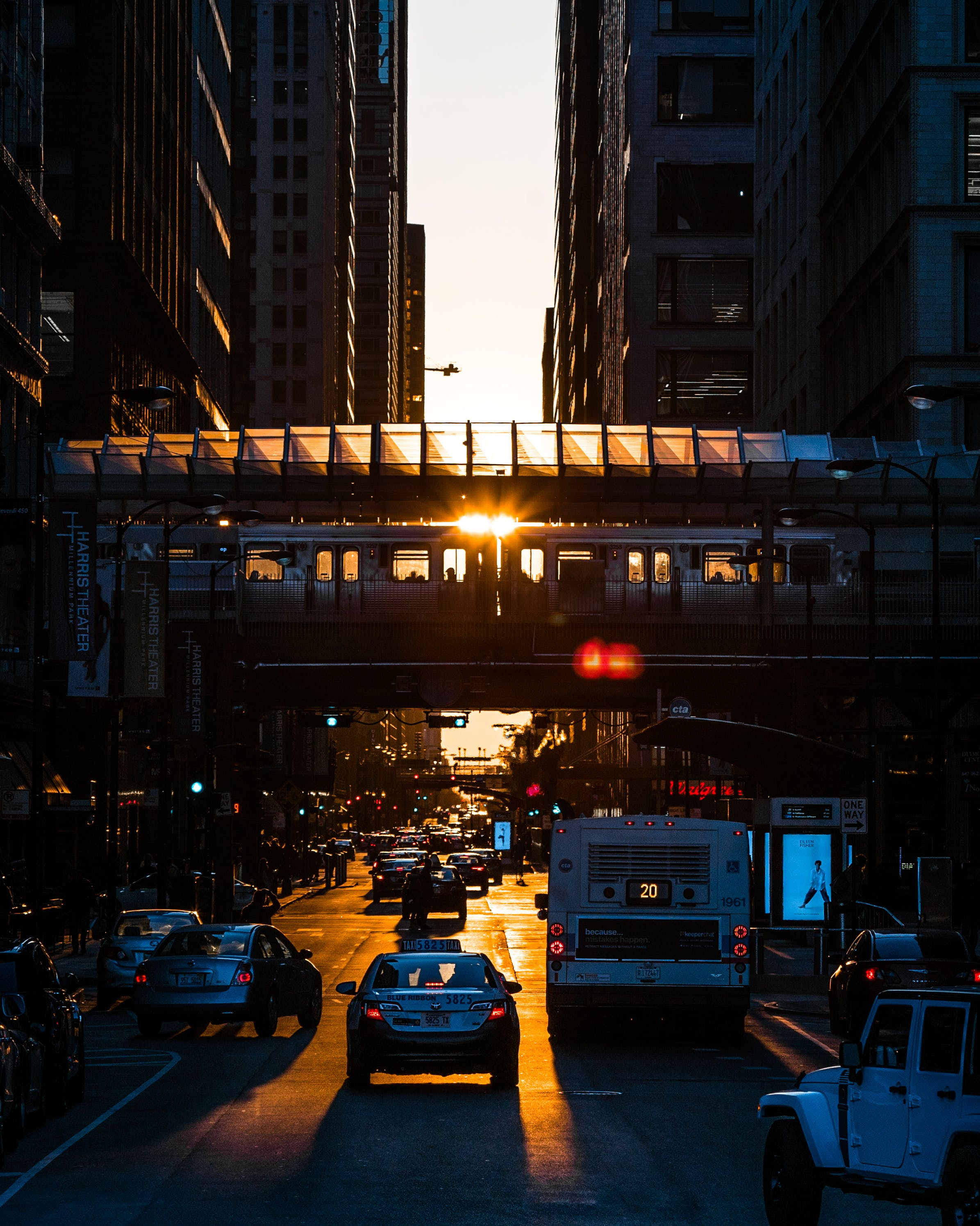 Vehicles on Street during Golden Hour