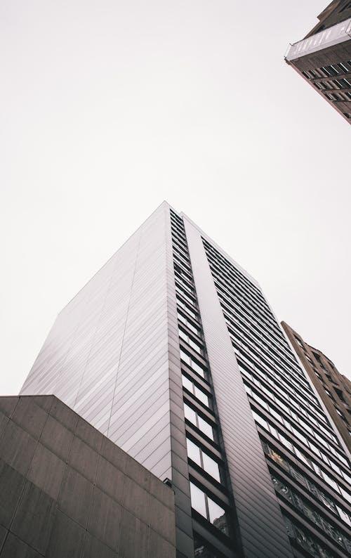 シカゴ, シティ, ダウンタウン, ローアングルショットの無料の写真素材