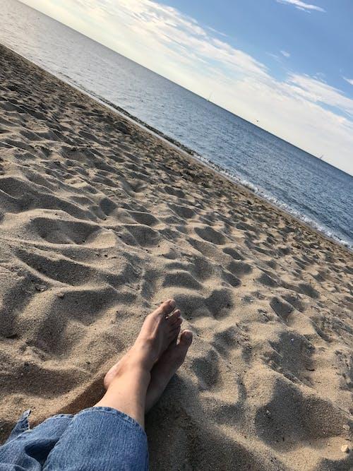 Foto profissional grátis de praia, vida na praia