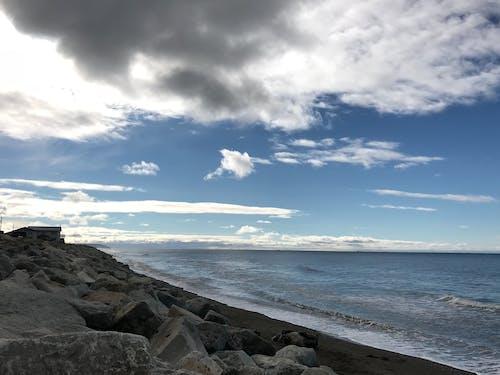 Foto profissional grátis de beira-mar