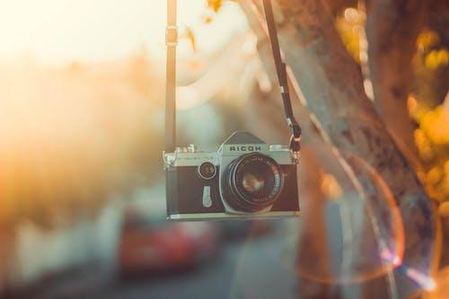 Photos gratuites de ancien appareil photo, appareil photo, arrière-plan flou, brouiller