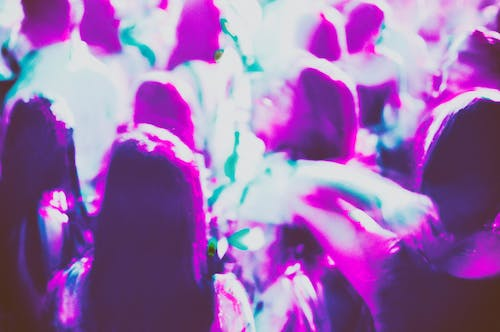 Free stock photo of analog, antro, blur, crowd