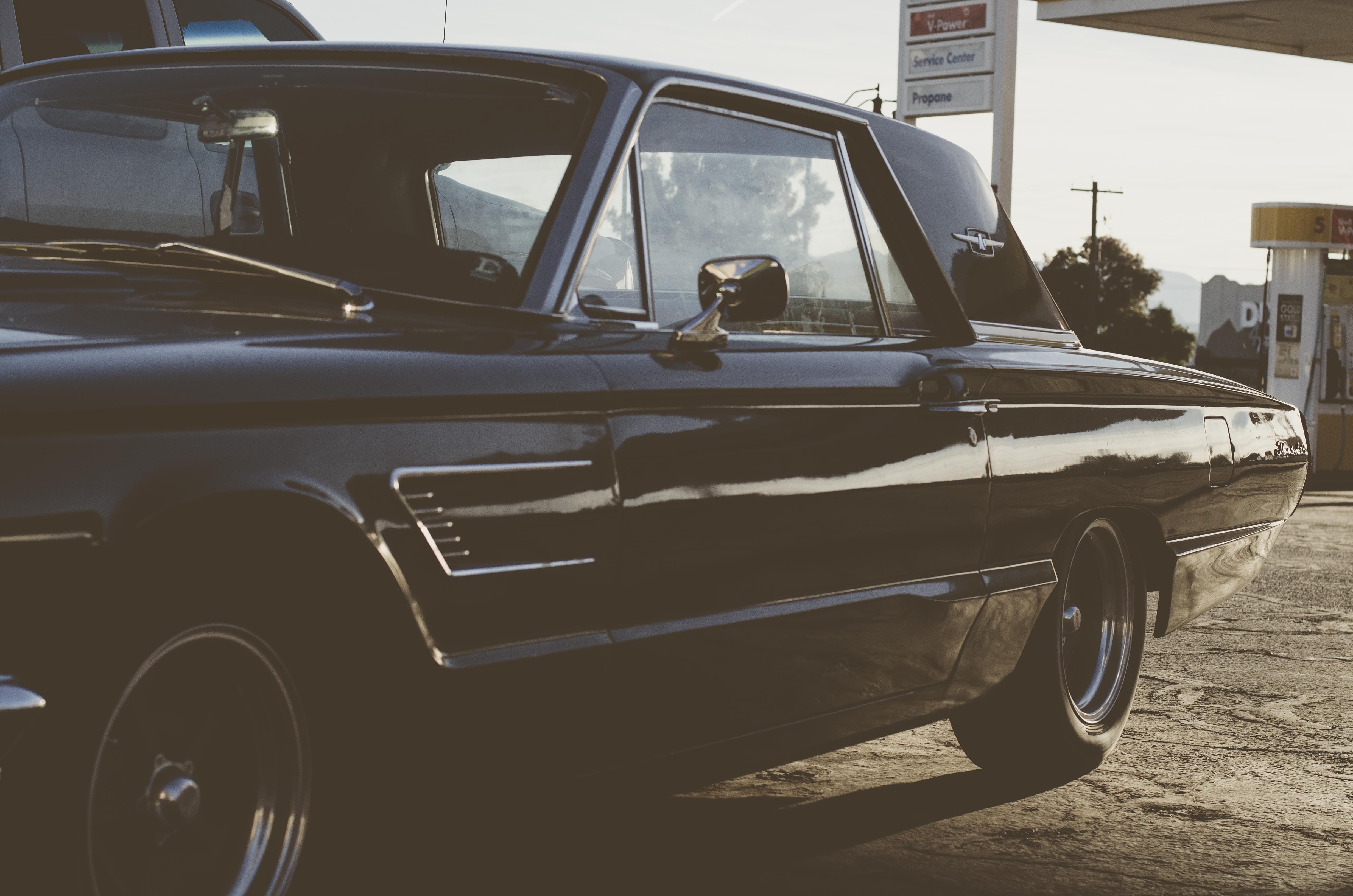 Free stock photo of black car, car, thunderbird
