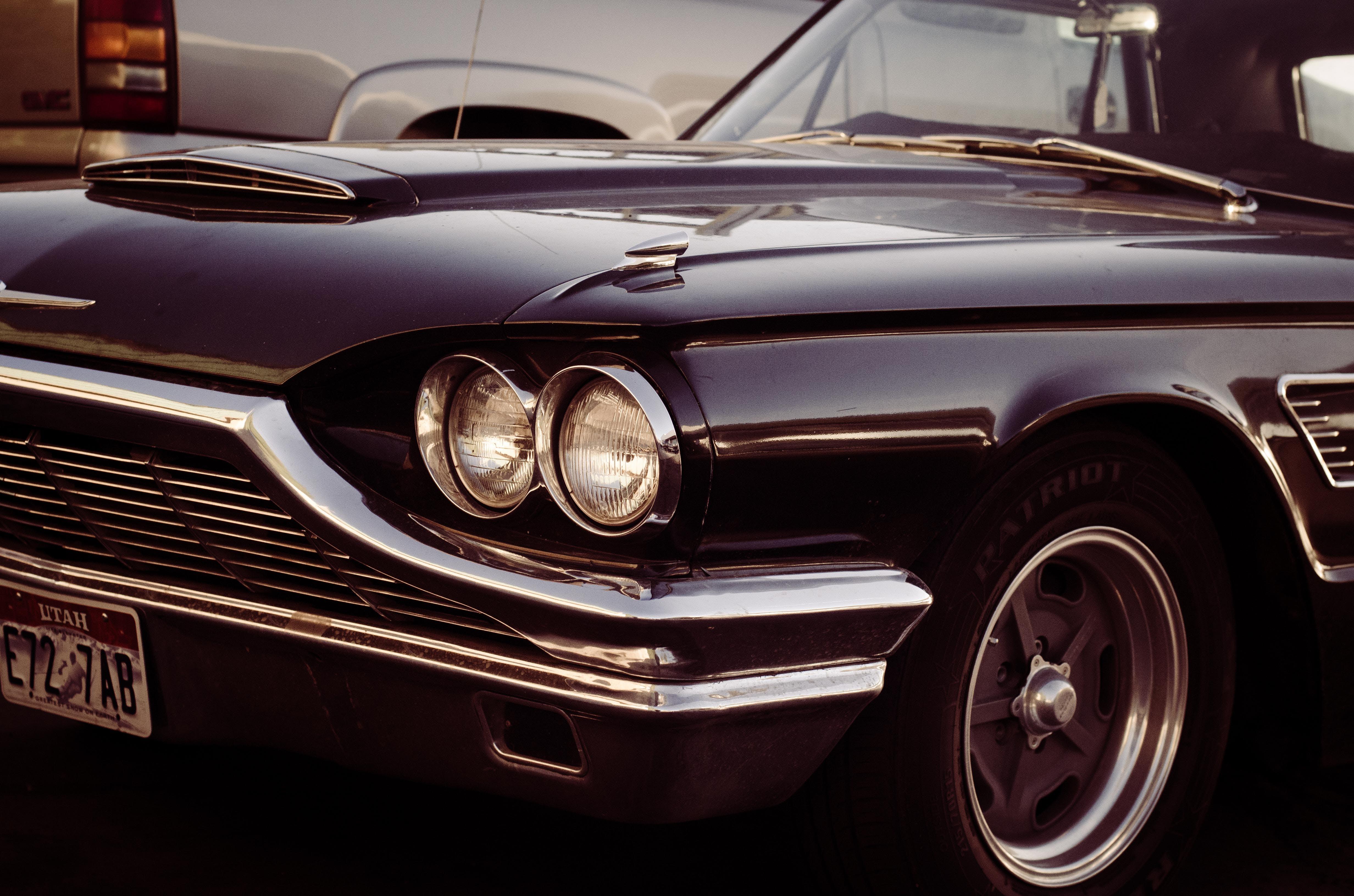 Free stock photo of black car, blackbird, car