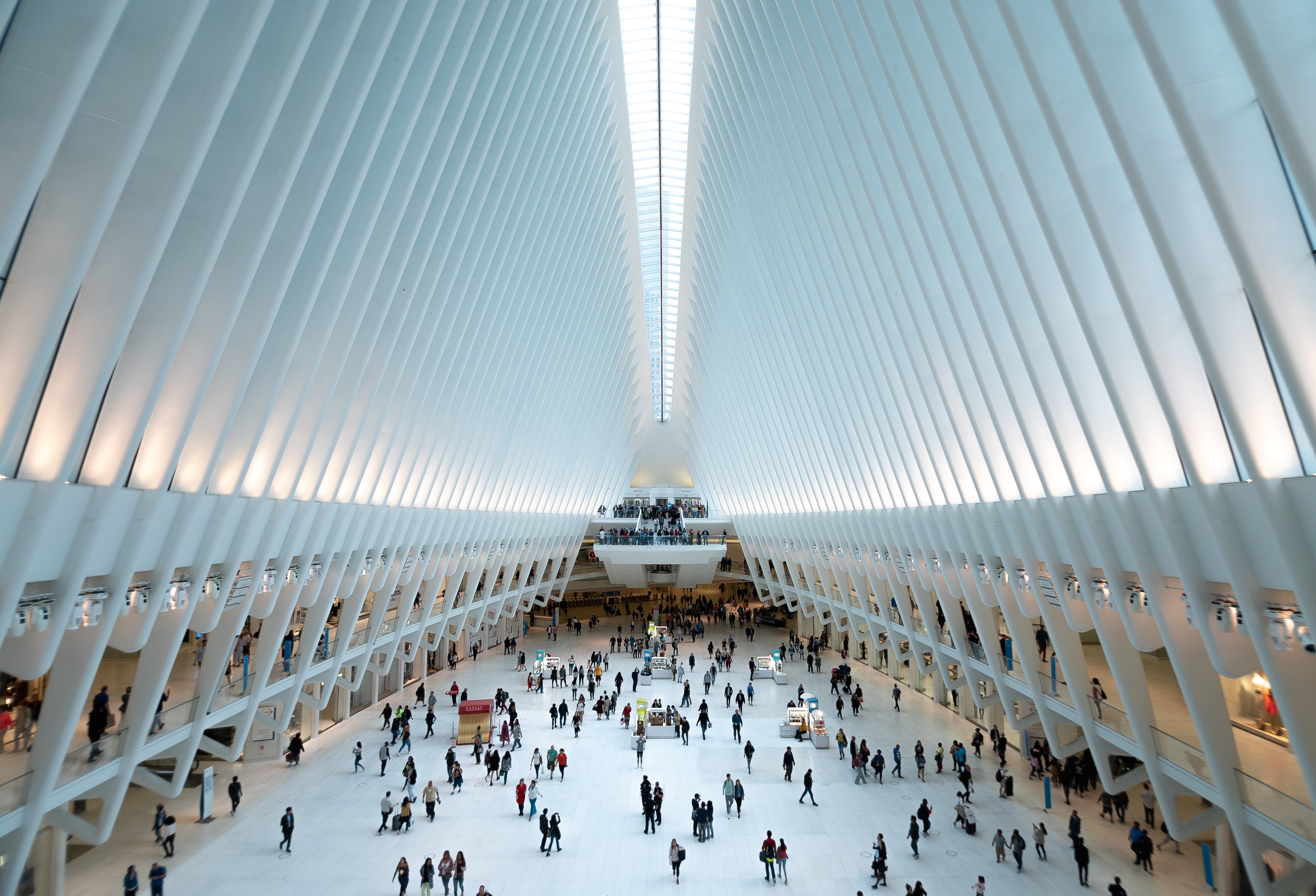Free stock photo of new york, oculus