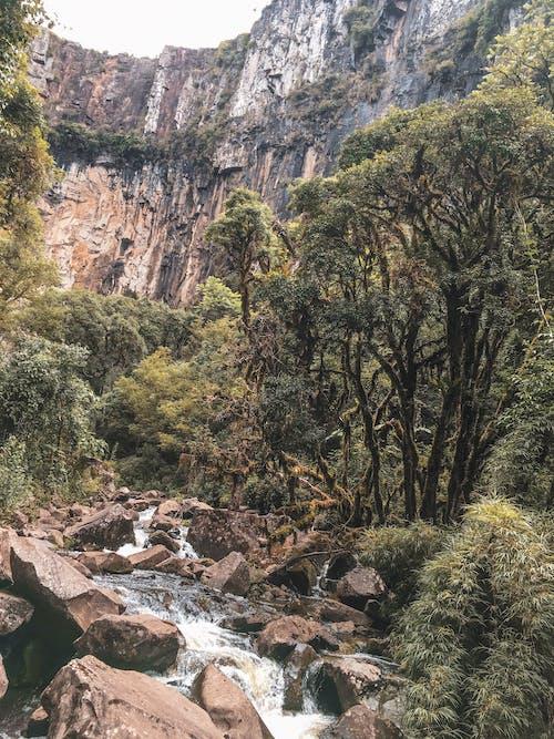Základová fotografie zdarma na téma vodopád