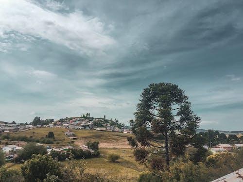 Základová fotografie zdarma na téma hřiště, město