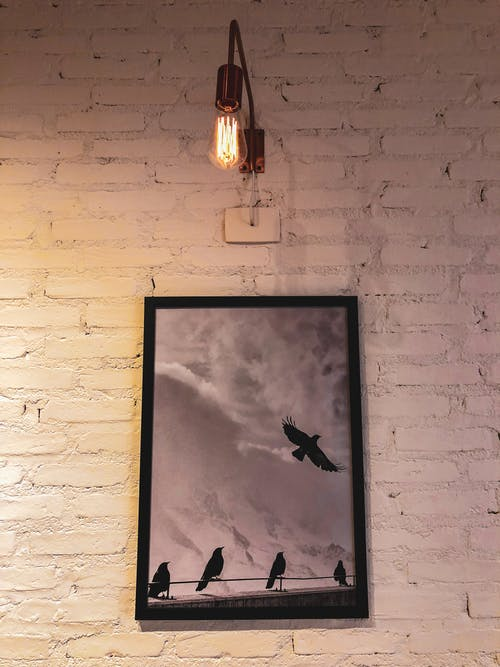 Silhouette of Birds Painting