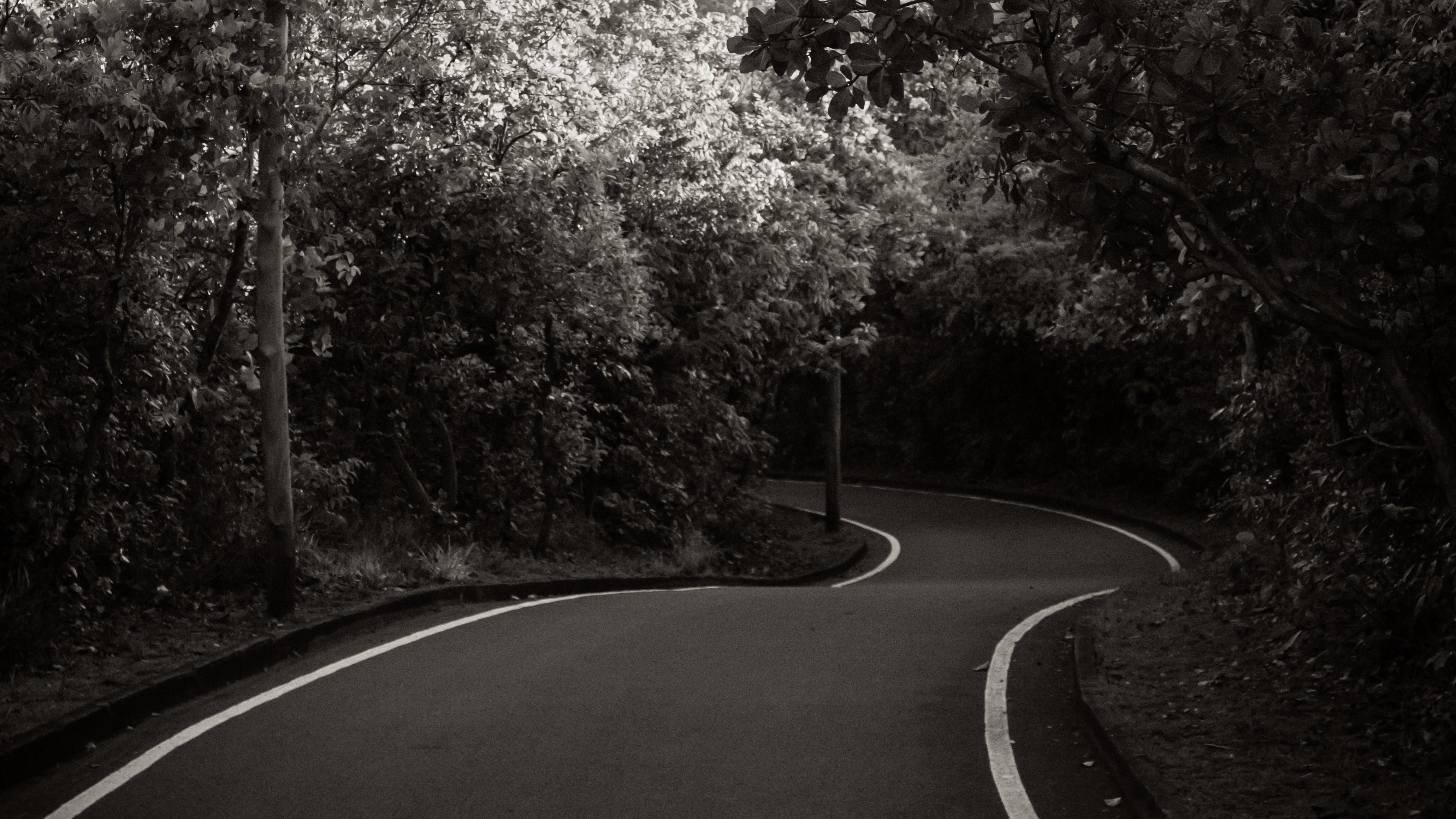 Free stock photo of autobahn, b&w, foot path, park