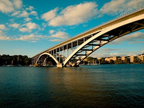 Free stock photo of bridge, nature, ocean