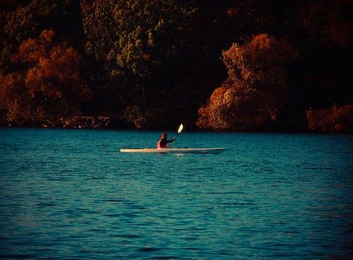 Základová fotografie zdarma na téma člun, kajak, kánoe, moře