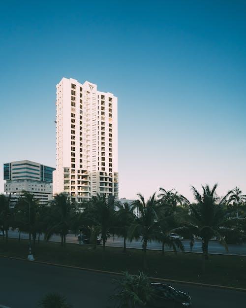 bina, cancun, gökdelen, Kent içeren Ücretsiz stok fotoğraf
